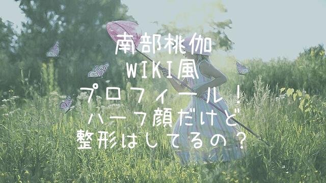 南部桃伽,wiki,プロフィール,ハーフ,整形